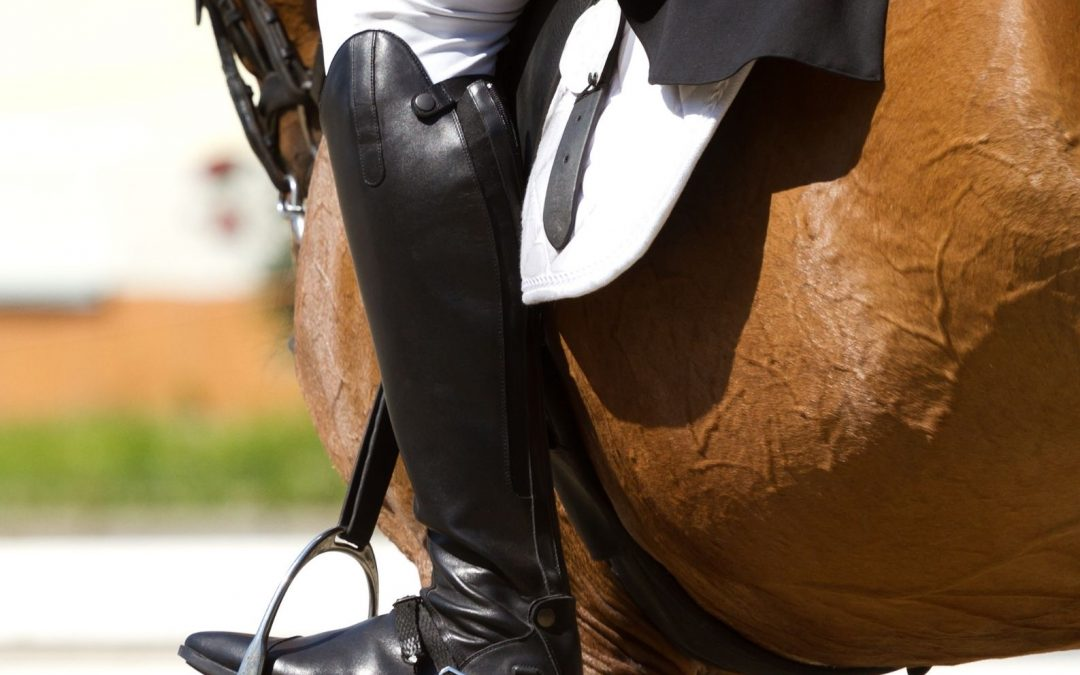 EVER WONDERED WHAT THE WORK ROUTINE OF AN INTERNATIONAL DRESSAGE PARTNERSHIP IS?