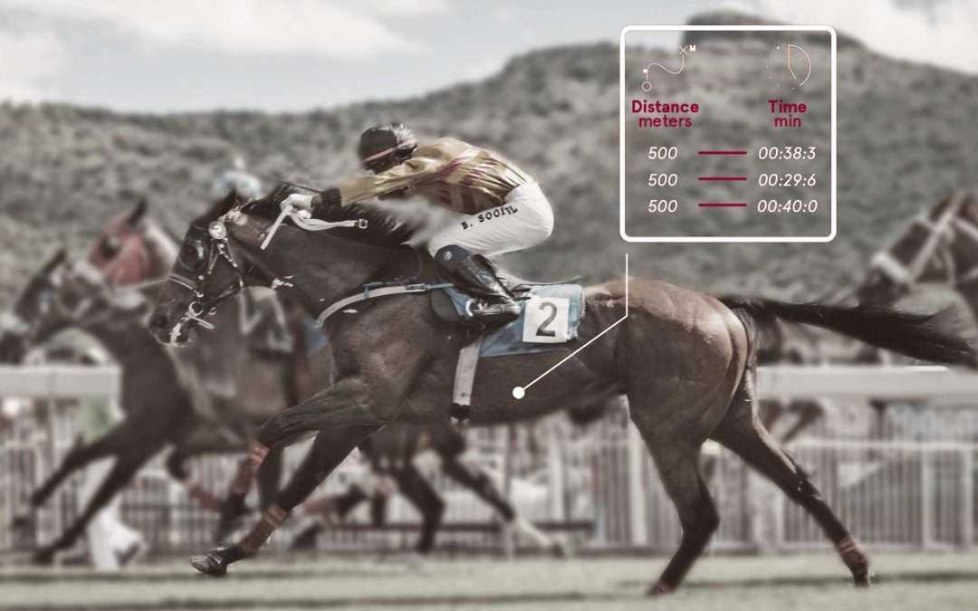 Horse racing speed analysis: what should you analyse?