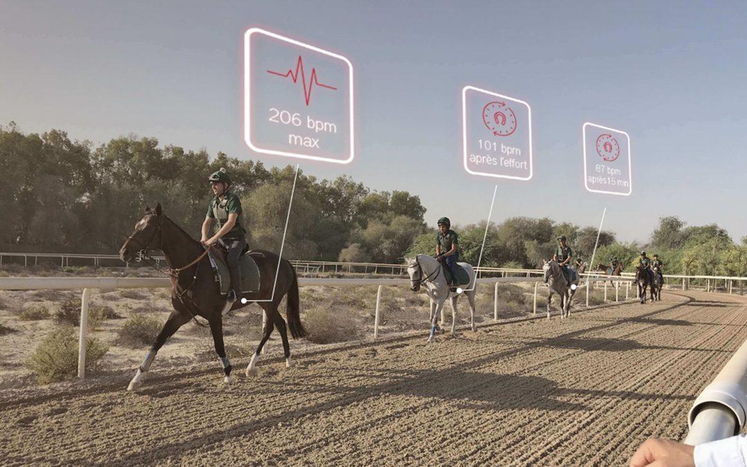 mort subite chez les chevaux de course