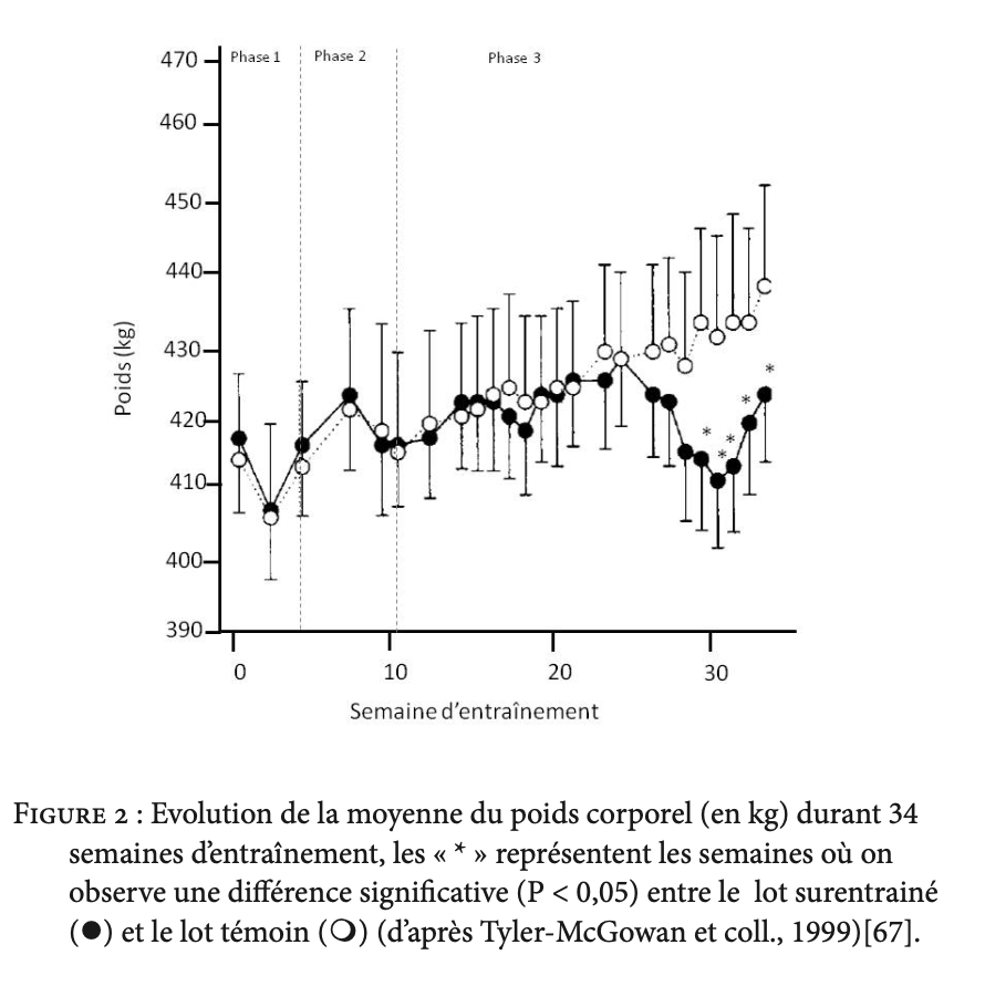 graphique evolution de la moyenne du poids corporel durant 34 semaines d'entraînement