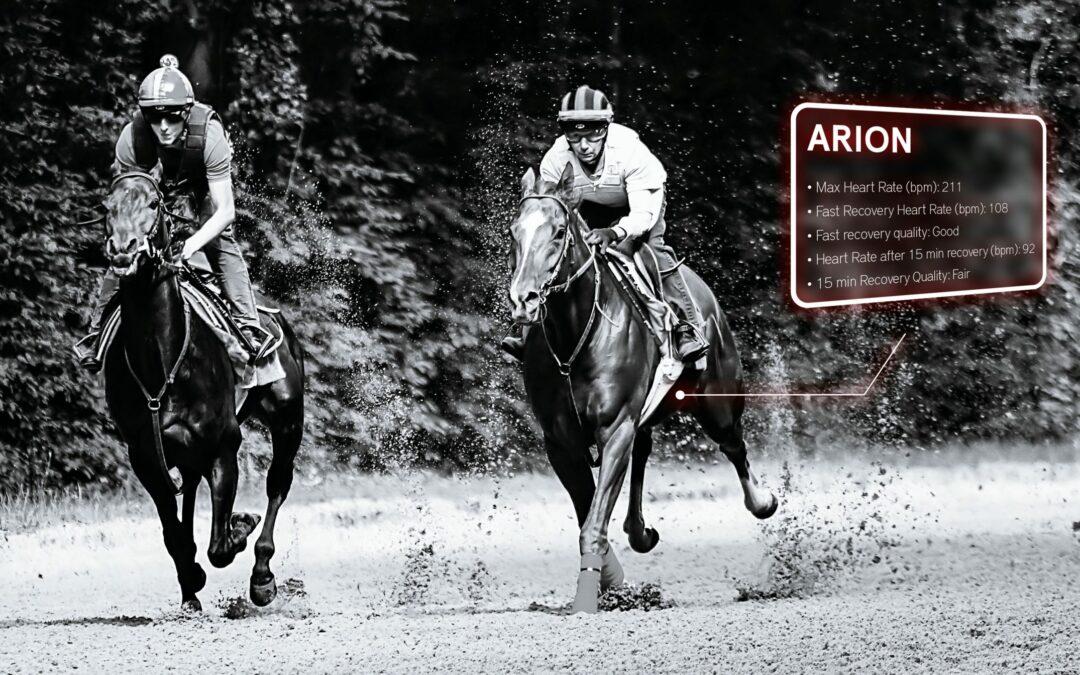 chevaux de course à l'entraînement pour l'article sur trouver le point d'équilibre