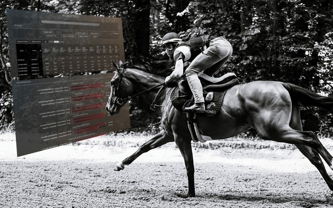 LONGITUDINAL MONITORING OF THE SPEED OF THE RACEHORSE