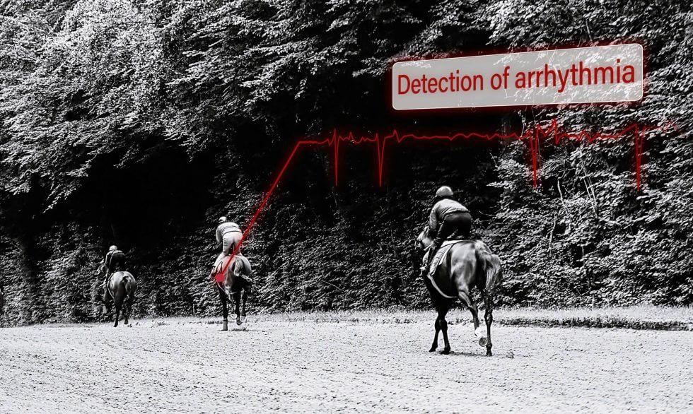 arrhythmias in the racehorse industry