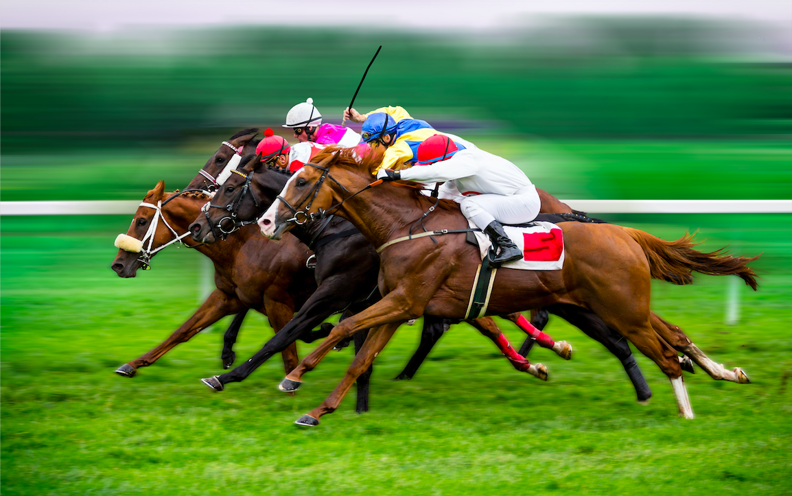 sudden death in racehorses