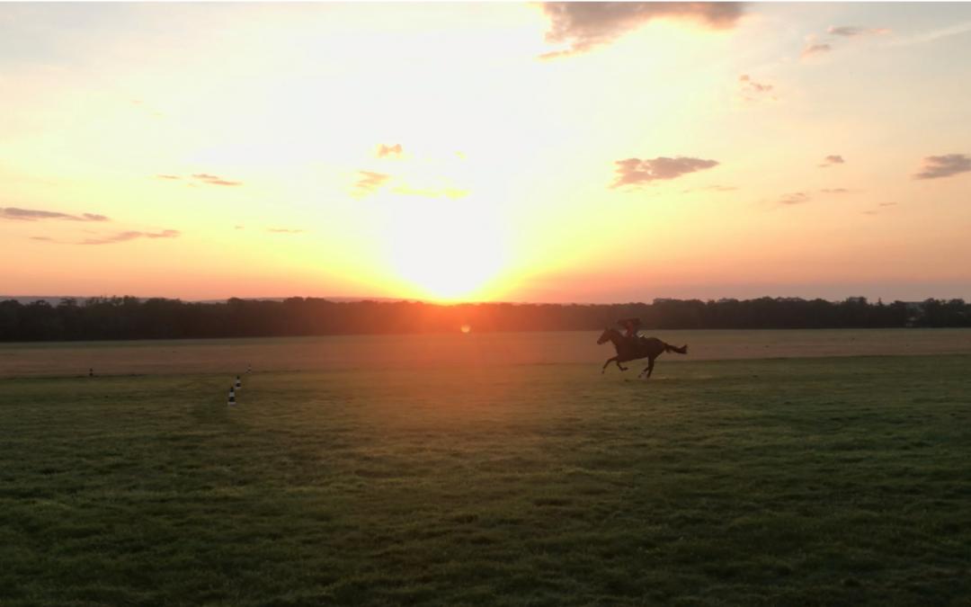 cheval course soleil