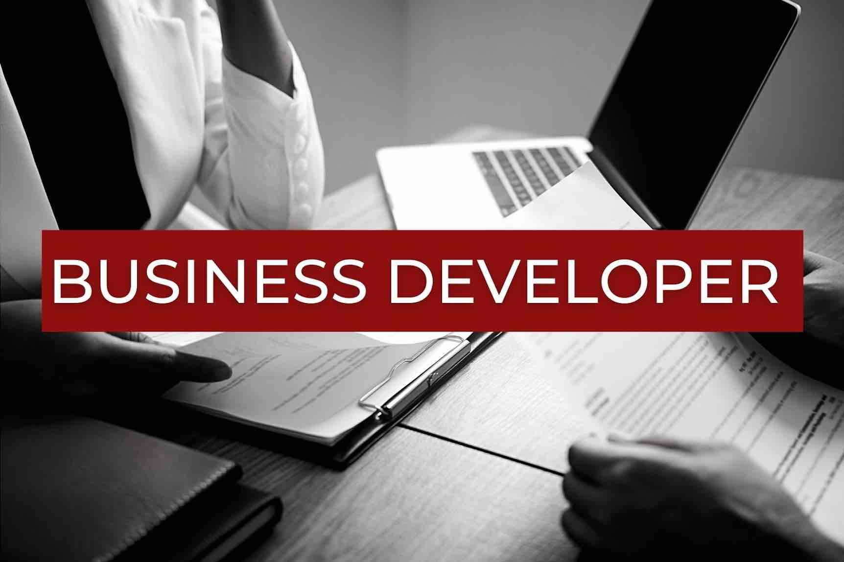 business developer offer
