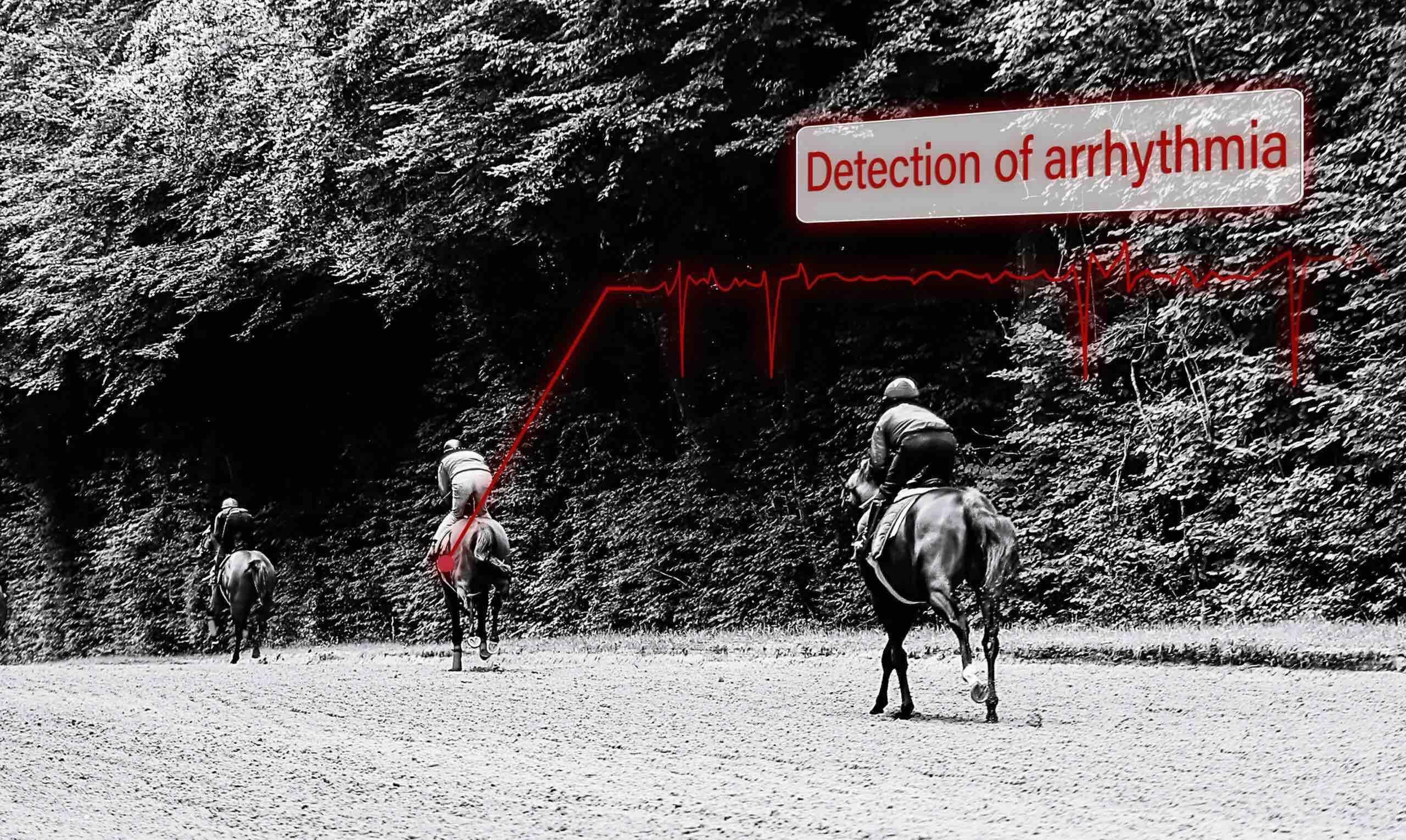 Détection des arythmies chez les chevaux de course à l'entraînement