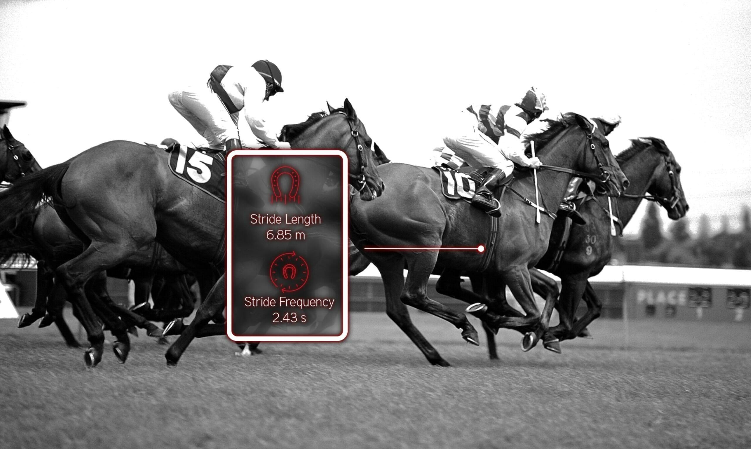 cheval de course data