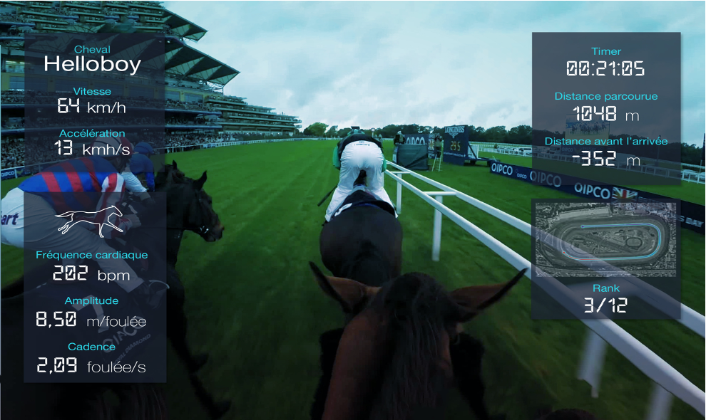 real time data during a horserace at a racetrack