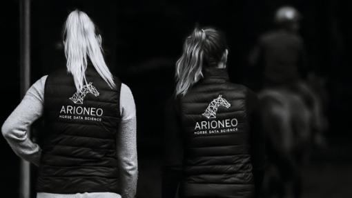 equipe arioneo marche dans une écurie