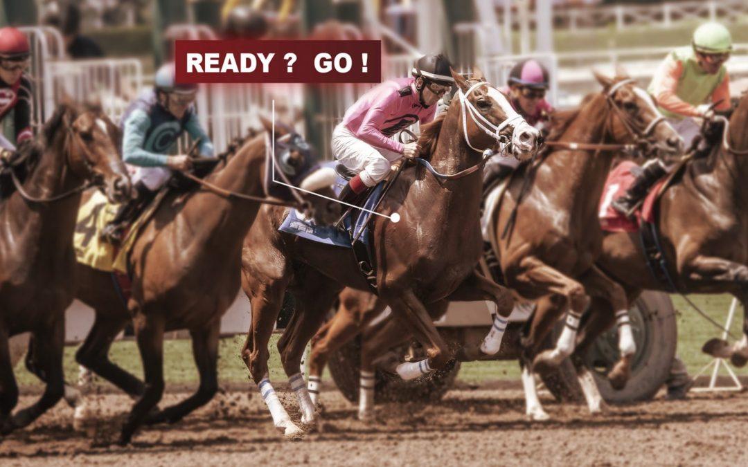 racehorse start
