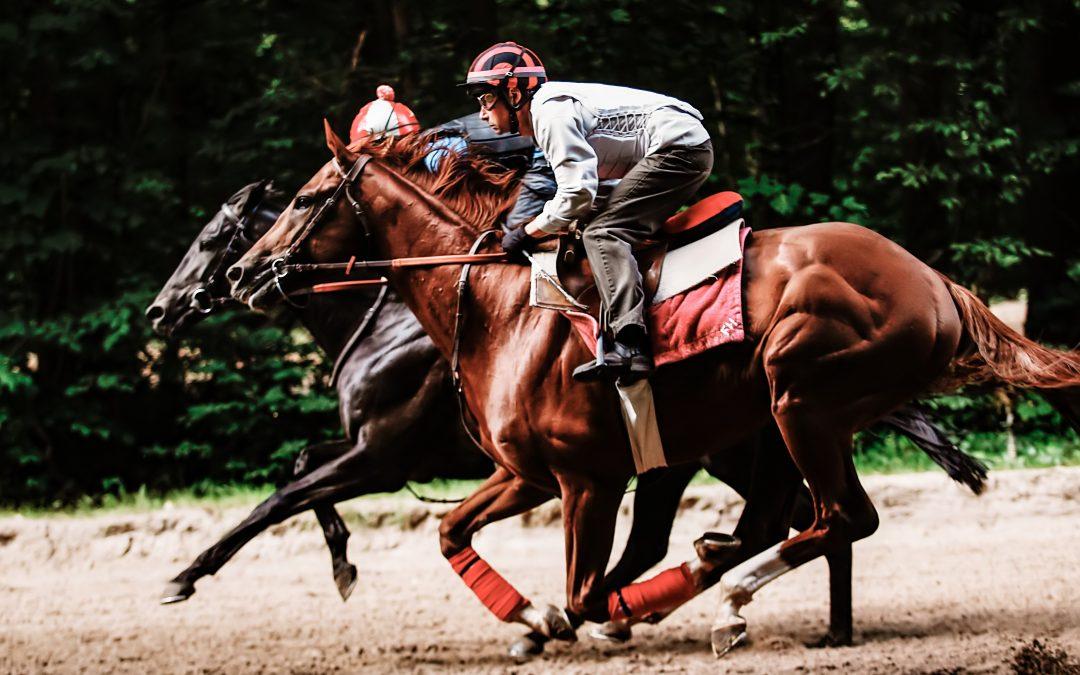 mesure de la performance du cheval de course