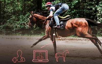 How can veterinarians offer new services thanks to EQUIMETRE VET?