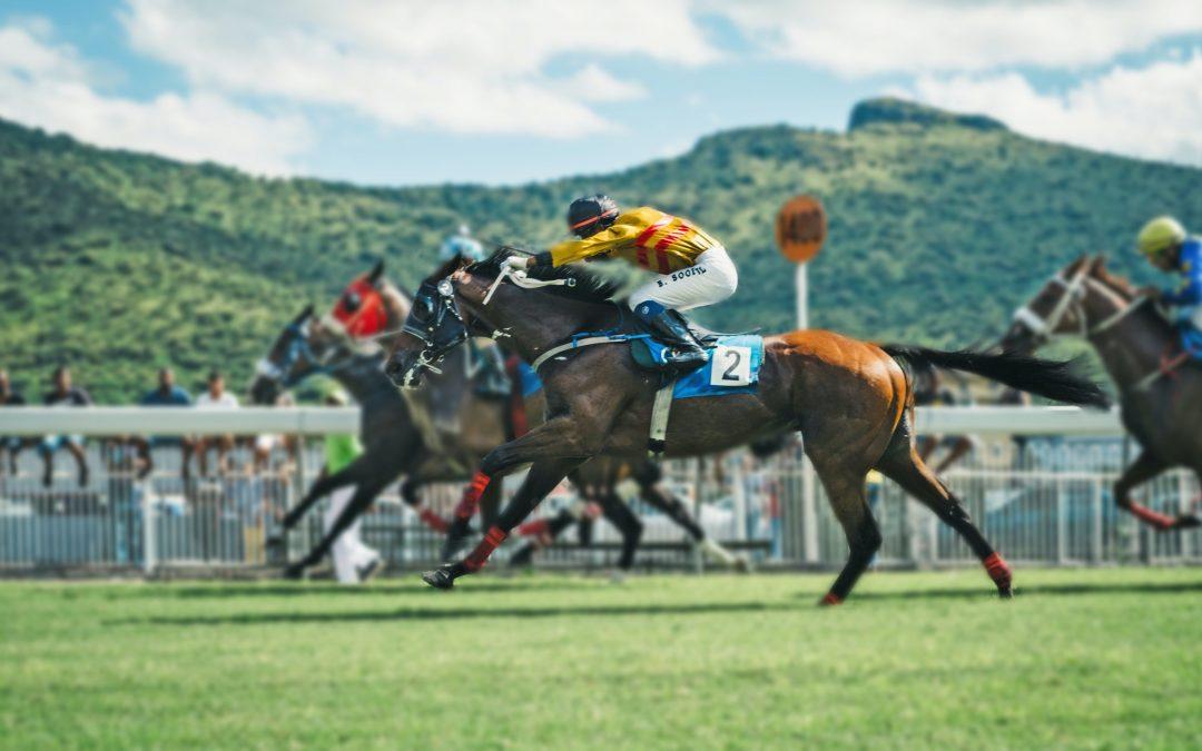 5 key elements to analyze racehorses' heart rate