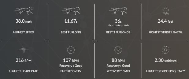 données de tenue maximale de vitesse d'un cheval de course après une période d'entraînement