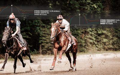Stratégie d'accélération du cheval de course :  plutôt cadence ou amplitude ?