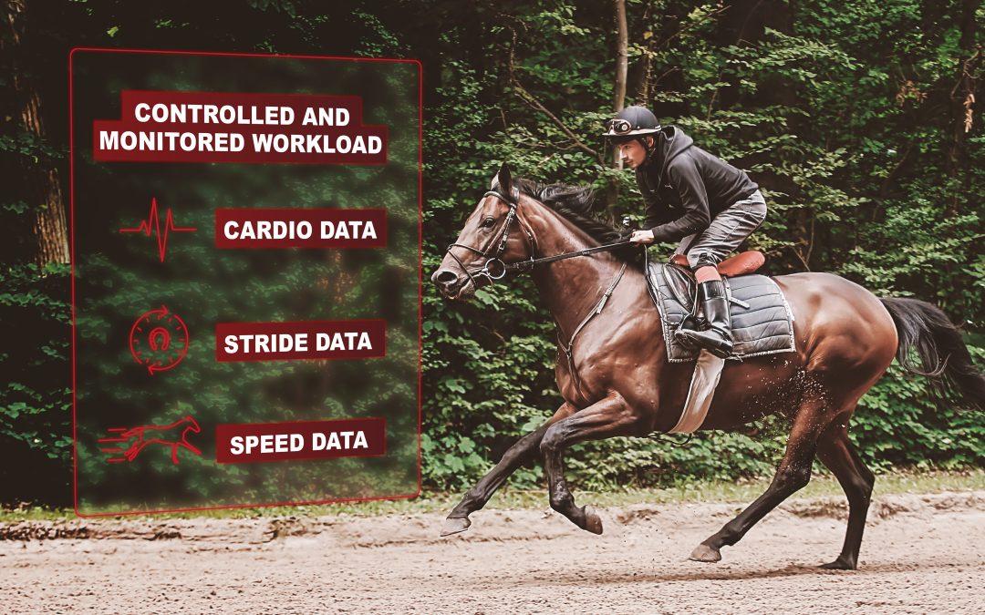 Pourquoi quantifier l'entraînement du cheval de course ?