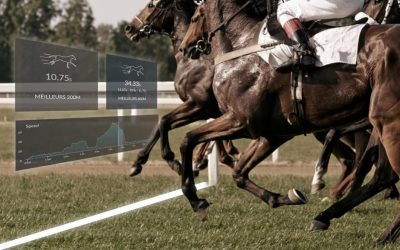 7 reasons to train racehorses with a finish line