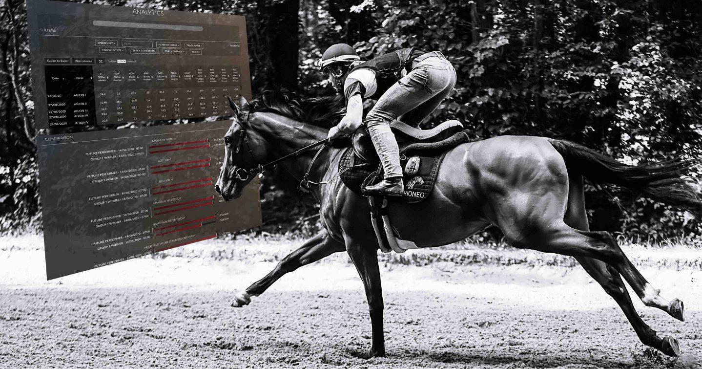 Télémédecine vétérinaire : Dr Emmanuelle Van Erck dans un box en train d'installer un Equimetre Vet sur un cheval
