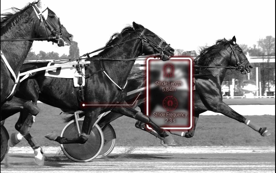 Analyse de la locomotion du cheval de course Equimetre