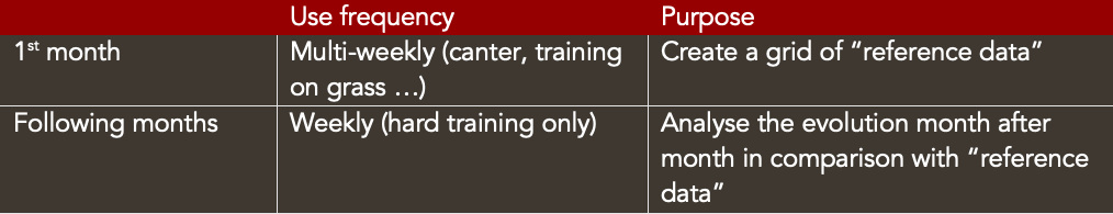 training 2 yo racehorses