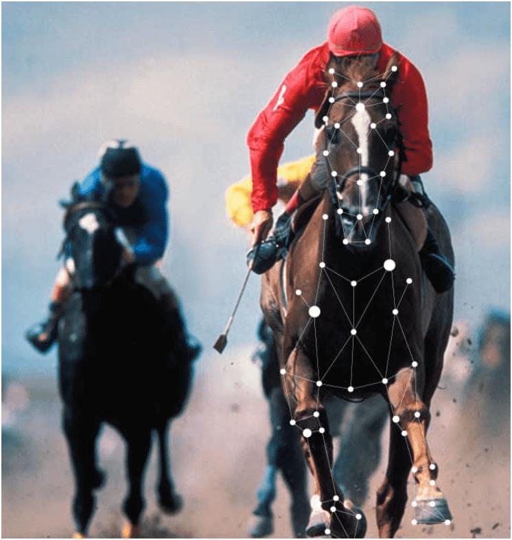 distance de course cheval