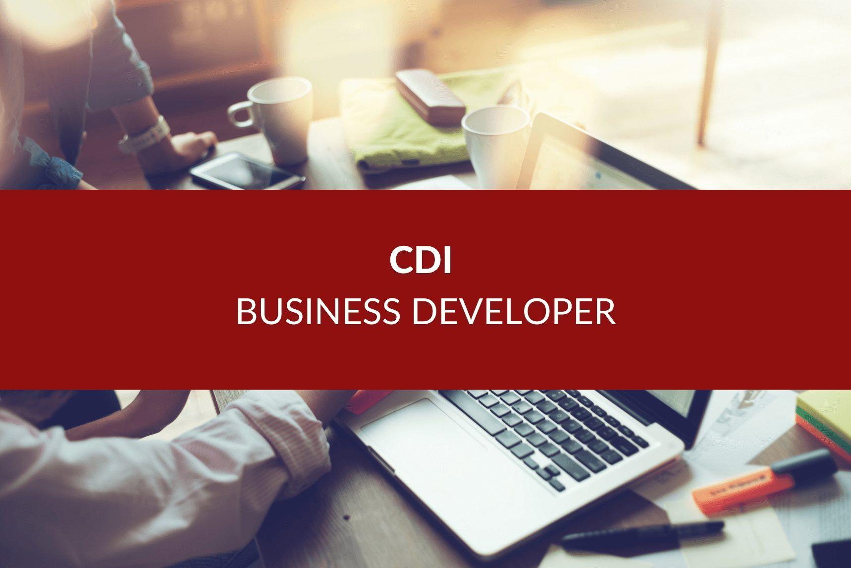 business developer offer