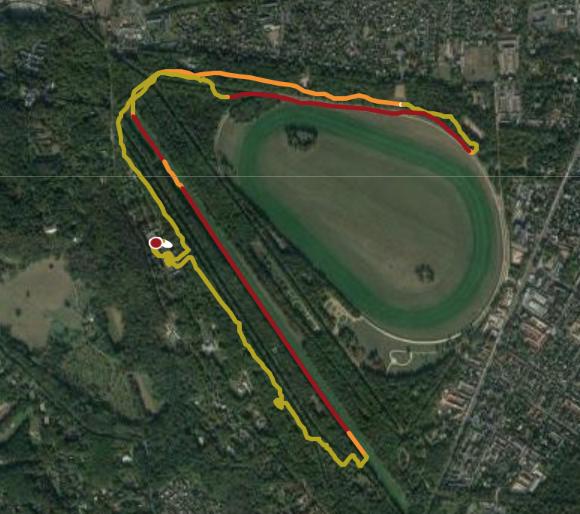 Cheval de course VS Athlète de running